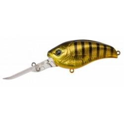 DD-Gigan 73 F Gold Stripe