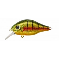 Dogora 65 F Gold Perch