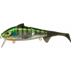 Dogora Wake 170 F Blue Gill Green
